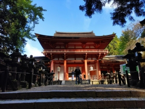 Nara202010-245