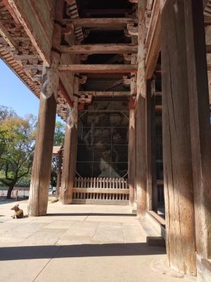 Nara202010-326