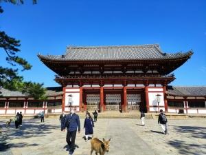 Nara202010-328