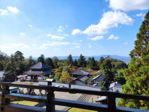 Nara202010-388