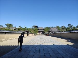 Nara202010-528