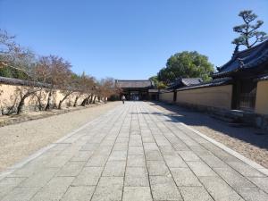 Nara202010-588